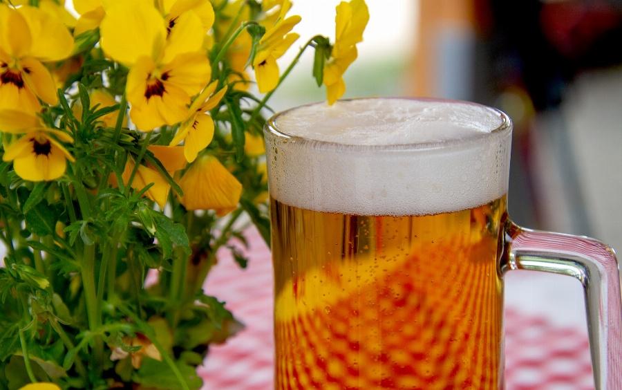 Greeting e-card Beer cup - beer feast