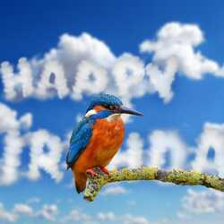 greeting e-card Happy Birthday clouds with bird
