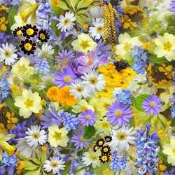 Apsveikuma e-kartiņa Krāsaini dažādi ziedi