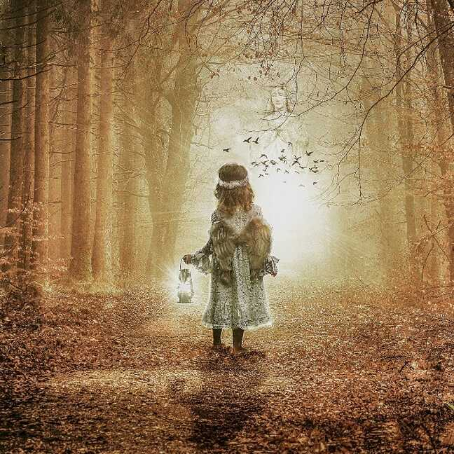 Meitene ar laternu mistiskā mežā e-kartiņa