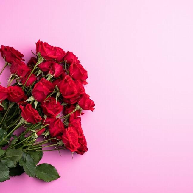 Sarkanas rozes uz rozā fona e-kartiņa